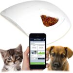 Feed and Go Smart Pet Feeder with Built-In Webcam