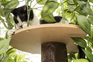 FEANDREA 68.5 Inches Sturdy Cat Tree